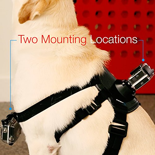Sabrent Fetch (Dog Harness) Chest Strap Belt Mount for GoPro cam